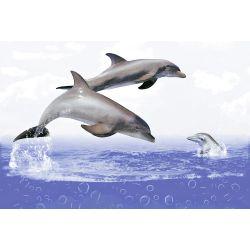 HWH Sea Dolphin HL